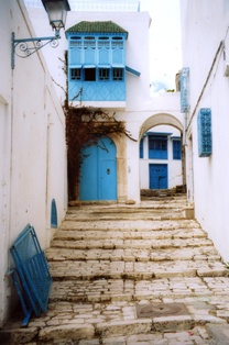 architecture de sidi bou said