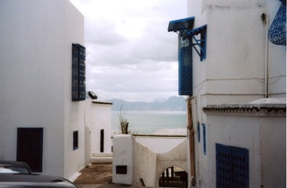 photo architecture sidi bou said